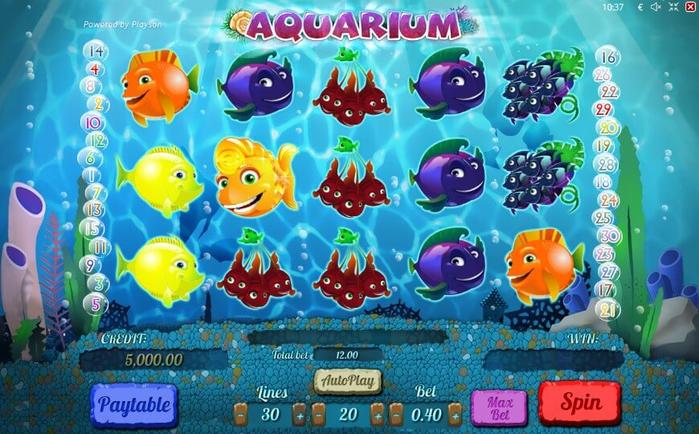 3. Aquarium (700x434, 444Kb)