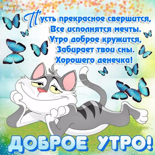 129400767_utro_novoe_s_kotikom (500x500, 356Kb)