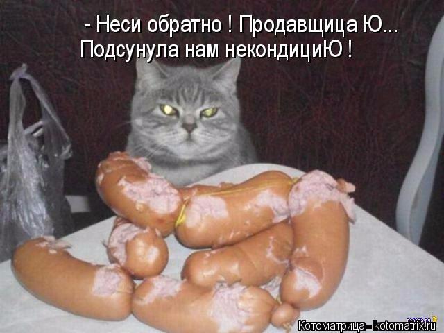 kotomatritsa_G (640x480, 191Kb)
