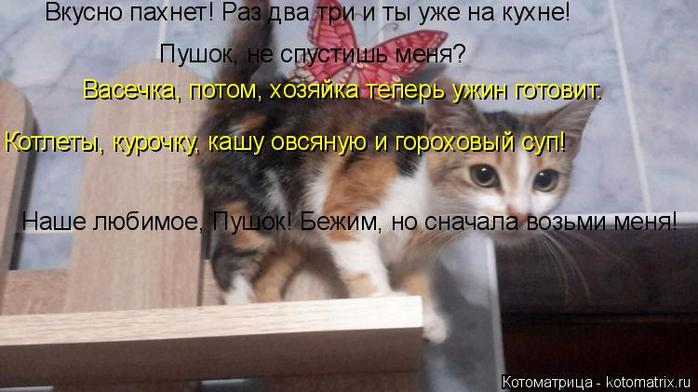 kotomatritsa_S (1) (700x392, 277Kb)