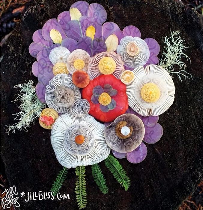 ленд арт фото грибов 7 (677x700, 555Kb)