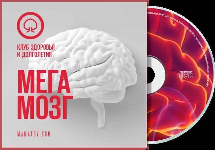 4687843_brain (700x486, 263Kb)