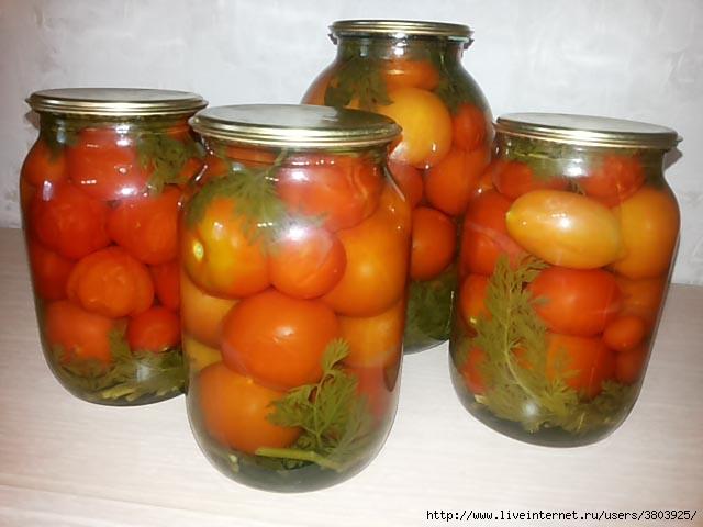 konservirovannye-pomidory-s-morkovnoj-botvoj-na-zimu4 (640x480, 130Kb)