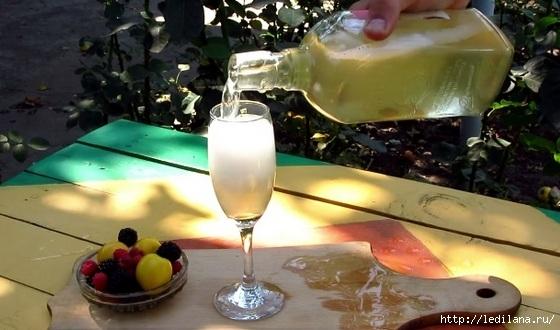3925311_domashnee_shampanskoe (560x330, 129Kb)