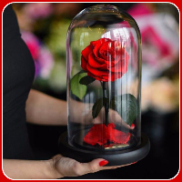 beauty-beast-inspired-3-years-forever-rose-london-6-58c6523251144__700-617x770 (200x200, 57Kb)