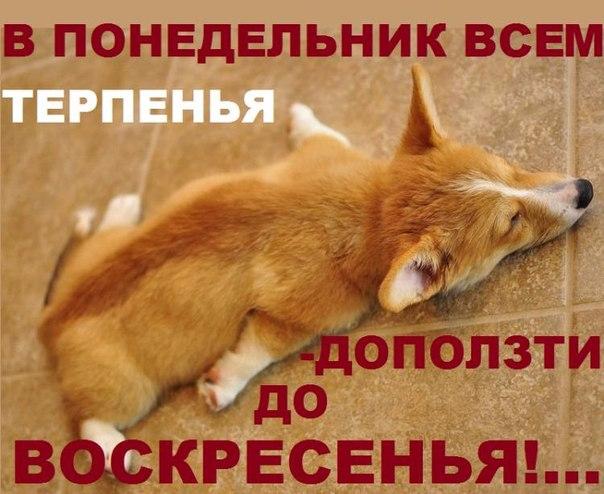 98092071_jHvMRqNM6hM (604x494, 264Kb)