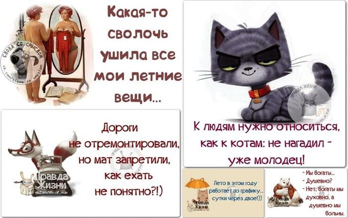 5672049_1405650440_frazki (700x437, 81Kb)