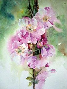 акварельные цветы 10 (236x314, 68Kb)