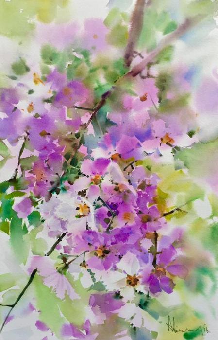 акварельные цветы 16 (449x700, 365Kb)