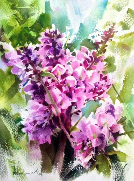 акварельные цветы 18 (517x700, 447Kb)
