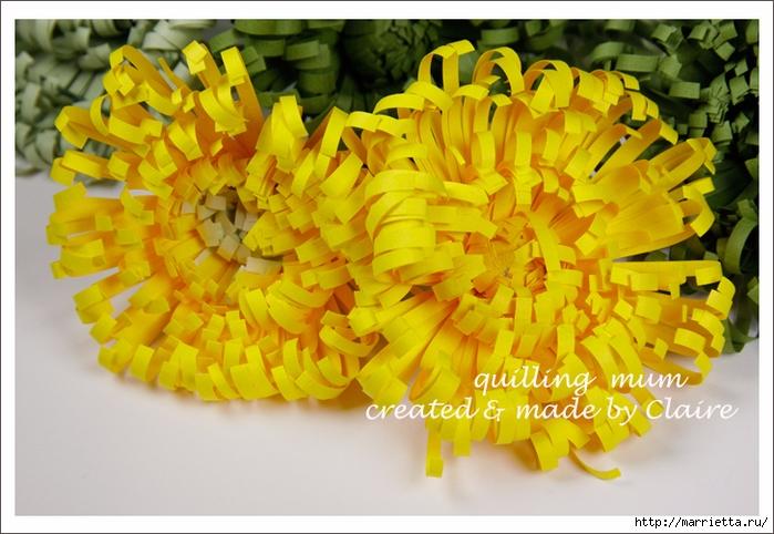 Хризантемы из бумаги. Фото мастер-класс (3) (700x482, 274Kb)