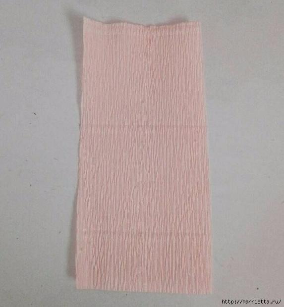 Цветы ЛИЛИИ из гофрированной бумаги. Мастер-класс (1) (573x620, 152Kb)