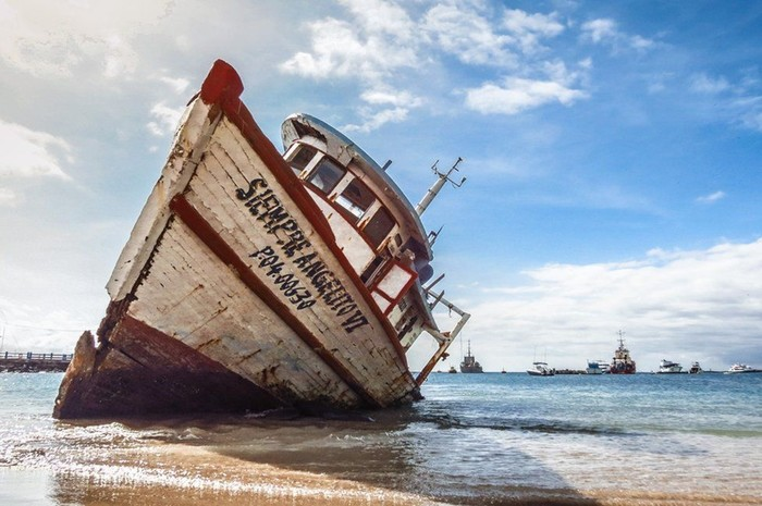Победители фотоконкурса о Галапагосских островах