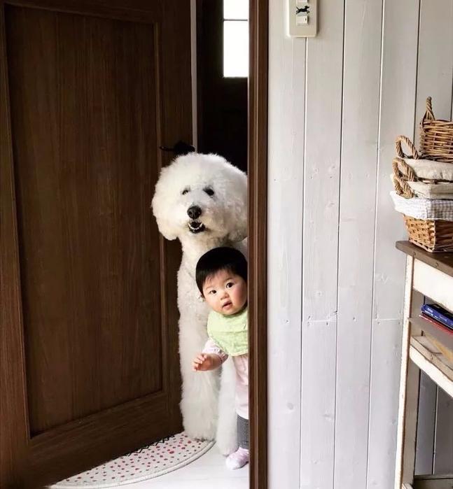 смешные фото девочка с собакой 1 (647x700, 292Kb)