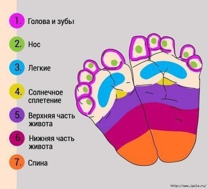 "alt=""Точечный массаж стоп в картинках младенцу""/2835299_Tochechnyiy_massaj_v_kartinkah_mladentsu1_813x742 (700x638, 150Kb)"