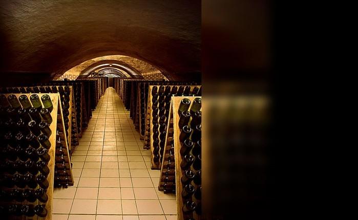 Музей шампанского «Абрау-Дюрсо»