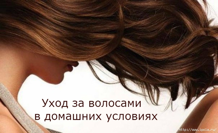 "alt=""Уход за волосами в домашних условиях""/2835299_YHOD_ZA_VOLOSAMI_V_DOMAShNIH_YSLOVIYaH (700x427, 203Kb)"
