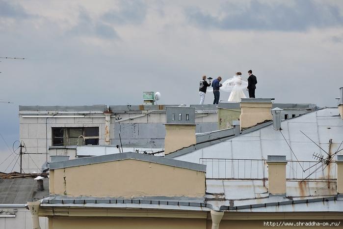Свадьба на крыше Санкт-Петербург (2) (700x466, 211Kb)