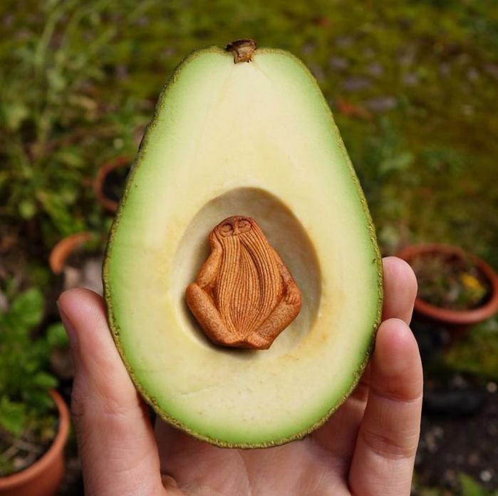 поделки из косточек авокадо 4 (700x695, 402Kb)