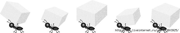 муравьи-нося-кубы-сахара-84758527 (700x131, 41Kb)