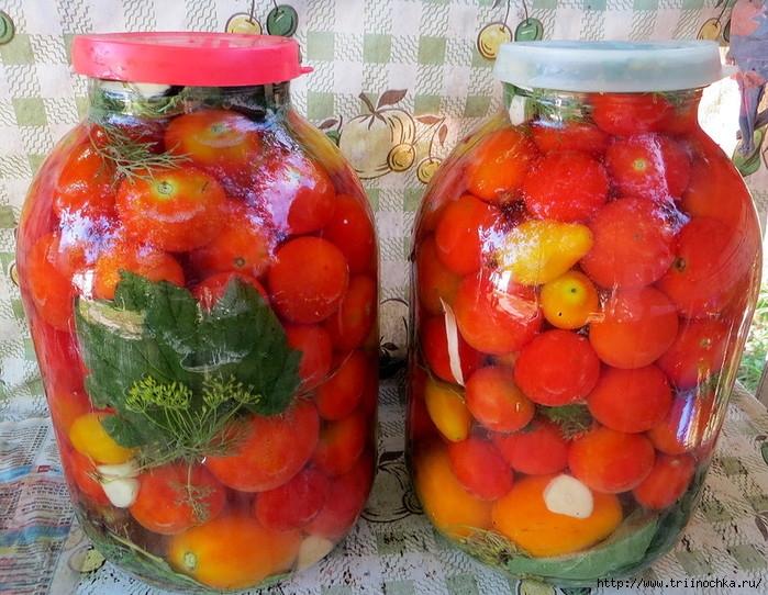 4059776_Assorti_s_pomidorami__Yniversalnii_marinad1 (700x542, 315Kb)