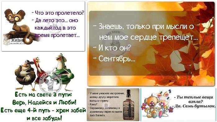 5672049_1408991060_frazki (700x392, 107Kb)