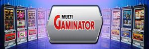 2719143_gaminatorslots (300x100, 78Kb)