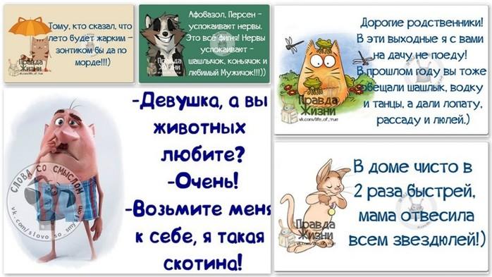 5672049_1403205621_frazki (700x393, 90Kb)
