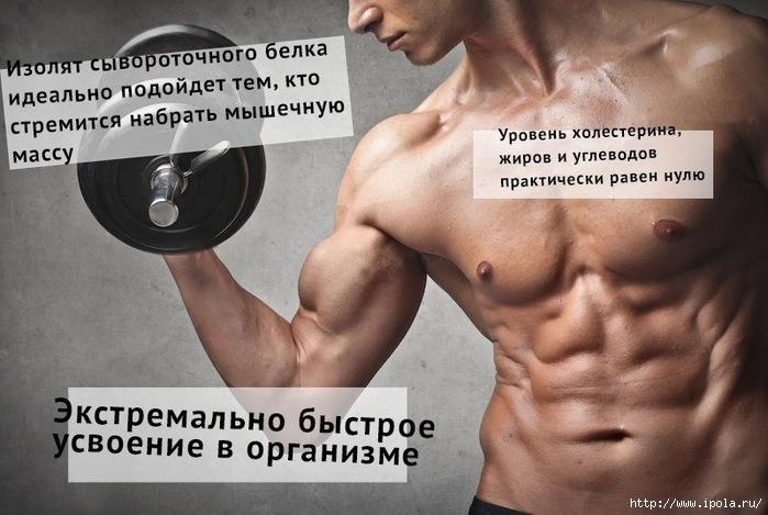 """alt=""""Для чего спортсмену нужен изолят сывороточного белка?""""/2835299_IZOLYaT_BELKA (700x469, 197Kb)"""