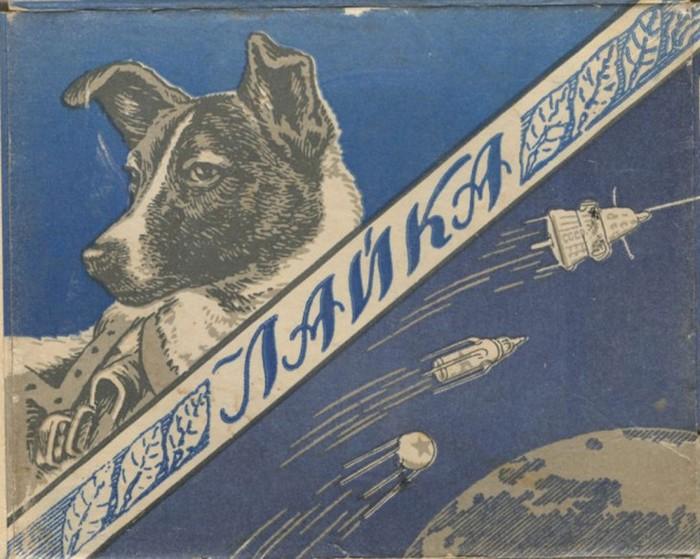Что стало с Лайкой   первой собакой в космосе