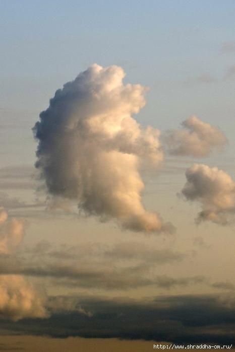 облако-Ёж (2) (466x700, 184Kb)