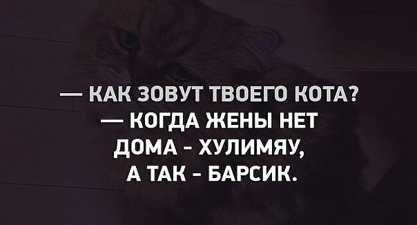 1121167_imageKXZ8471L (604x326, 31Kb)