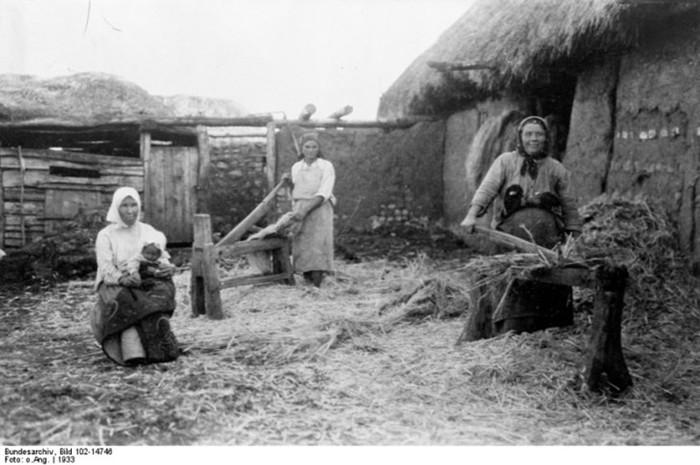 Какое влияние поволжские немцы оказали на русских