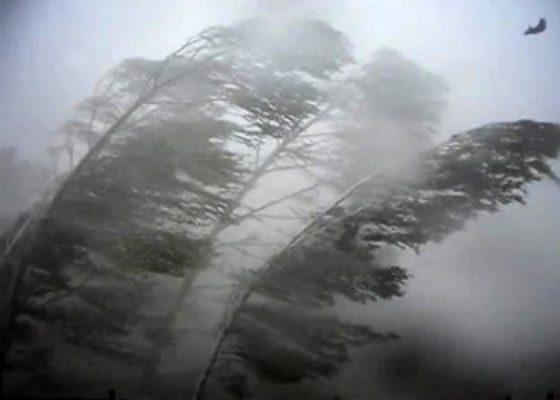 ураган (560x400, 21Kb)