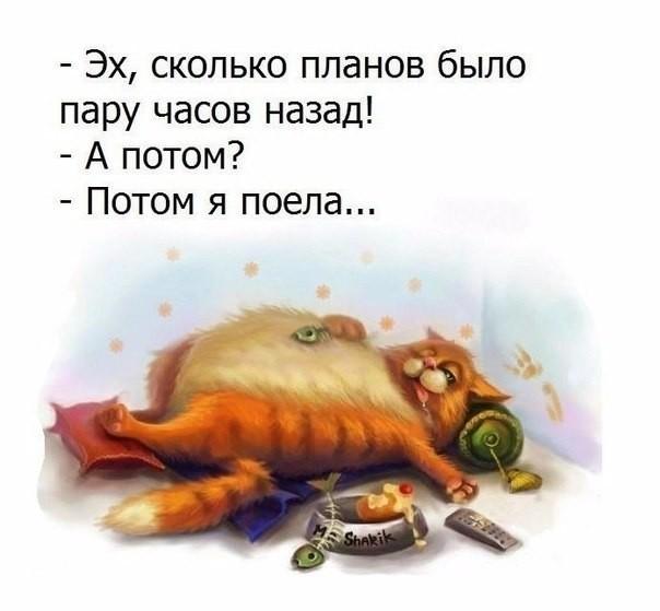 5745884_recepti_yborka (604x559, 49Kb)