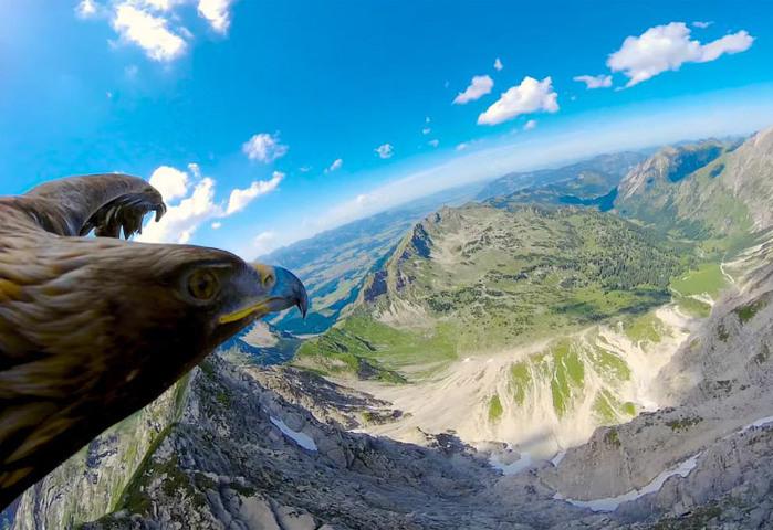 Как выглядят Альпы с высоты полета орла (видео)
