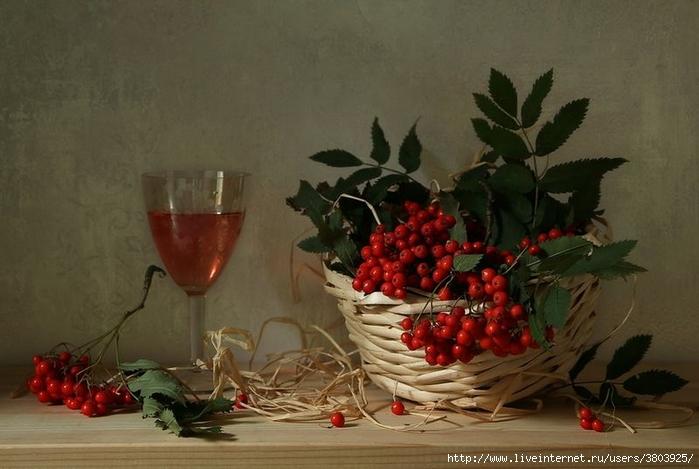 vino-rabina-red-5 (700x469, 206Kb)