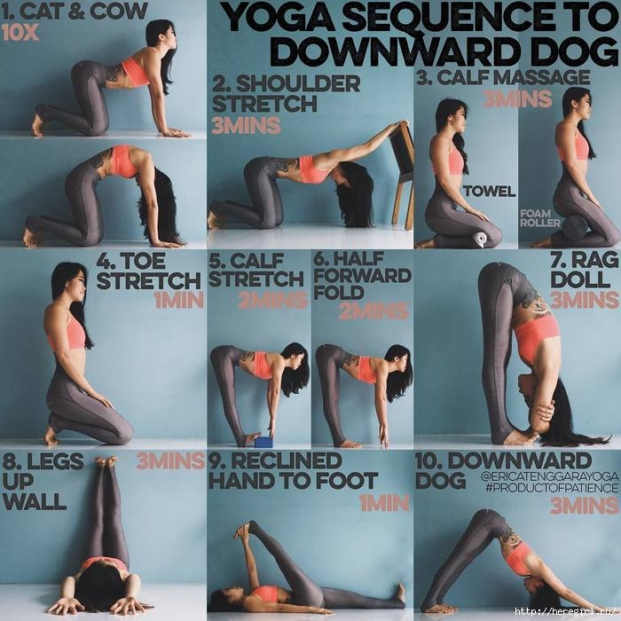 downward-dog-yoga-sequence (700x700, 238Kb)