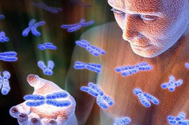 Человеческая речь воспринимается нашим ДНК