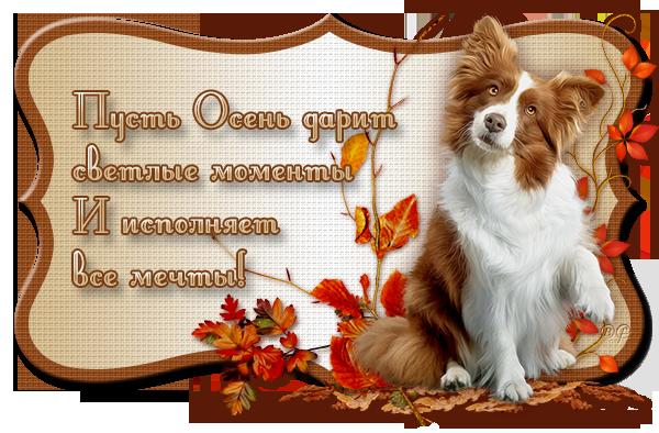 aramat_0K024 (600x394, 444Kb)