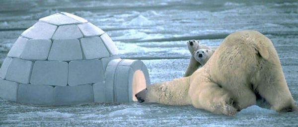 Почему ледяной дом иглу не тает изнутри?