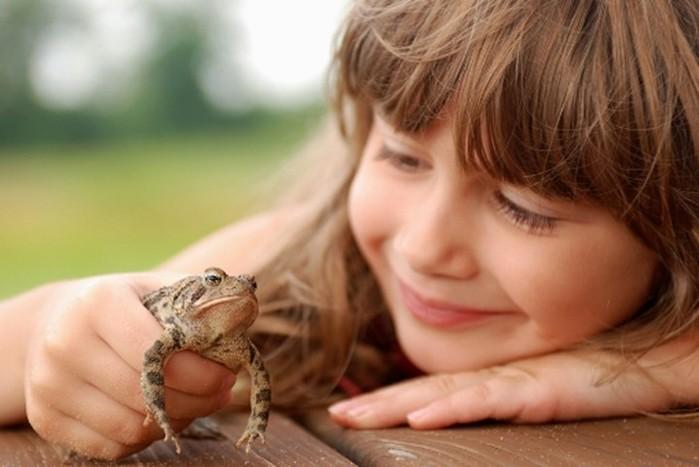 От жабы бородавки, а от книг - геморрой: мифы от родителей