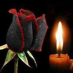 память чорна роза і свічка (247x247, 9Kb)