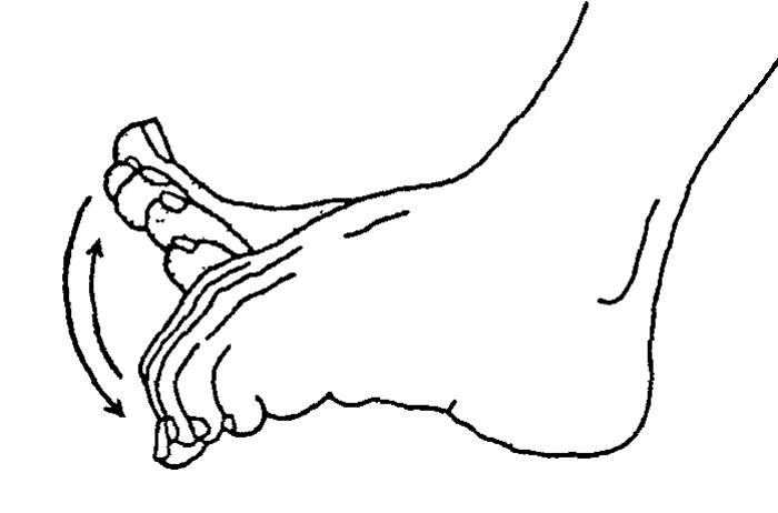 """alt=""""Упражнения для суставов пальцев ног""""/2835299_YPRAJNENIYa_DLYa_PALCEV_NOG2 (700x462, 26Kb)"""