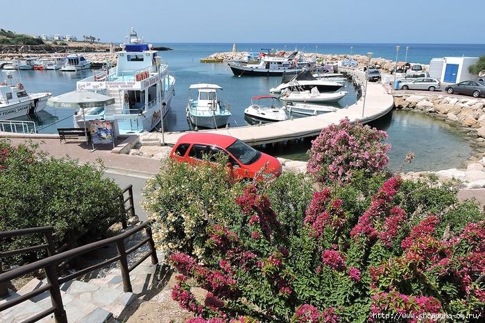 Shraddha_trаvel  Кипр май 2016 (74) (700x466, 422Kb)