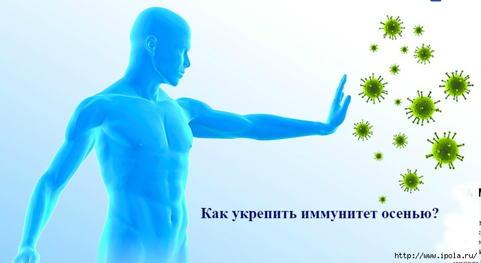 """alt=""""Как укрепить иммунитет осенью?""""/2835299__5_ (700x383, 138Kb)"""