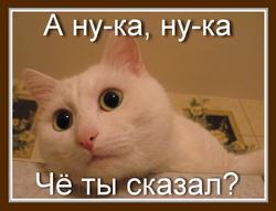 5778096_0_58120_2759aca3_XL (250x191, 18Kb)