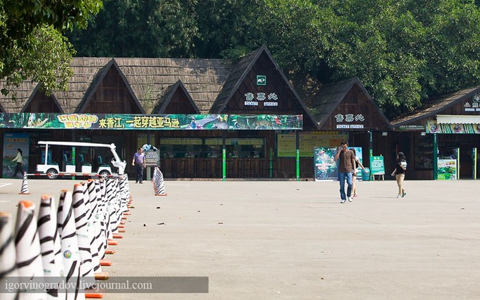 Сафари-парк. Китай. Гуанчжоу. Первая серия