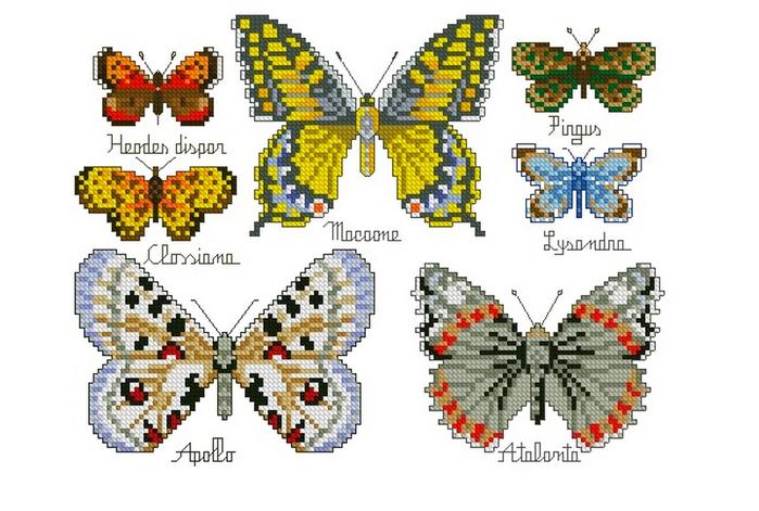 Панель с бабочками (700x471, 285Kb)
