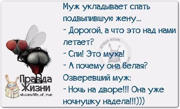 1412612293_frazki-15 (604x367, 158Kb)